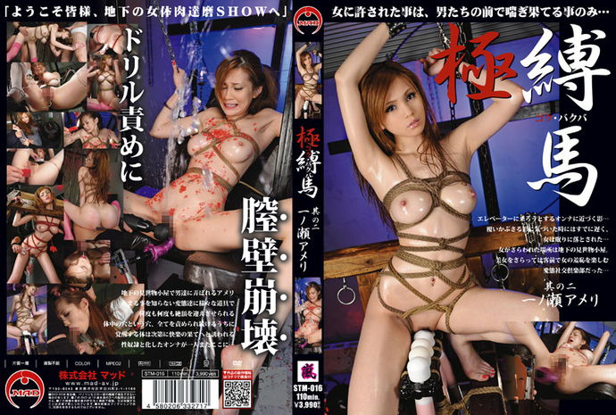 [stm016] Wild and Tied – Ameri Ichinose