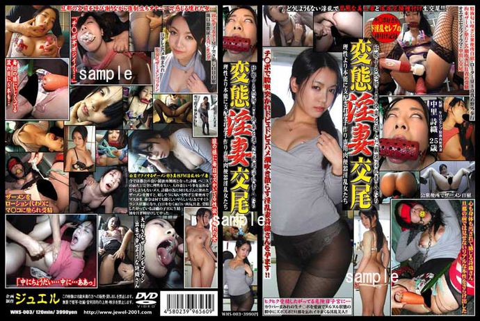 [WHS003] Perverted Licentious Wife Fucking Around