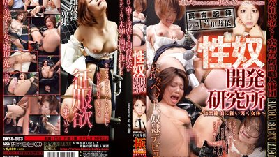 DXSE-003 Sex Slave Exploitation Lab - Female Flesh Weeps With Orgasmic Climaxes - Training Record Vol.3 Mei Ashikawa