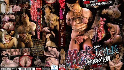 CMC-175 The Lady Boss Is Turned Into A Domesticated Bitch The Lustful Sacrifice Yurie Minamizawa