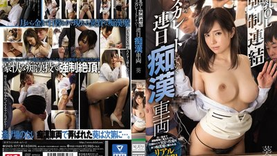 SNIS-977 Escalating from Groping to Penetration: Big Tits Office Lady's Daily Rides on Molester Train (Aoi)